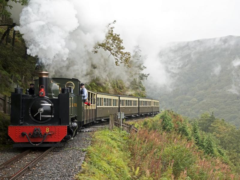 Train travelling along the Vale of Rheidol Heritage Railway, Wales