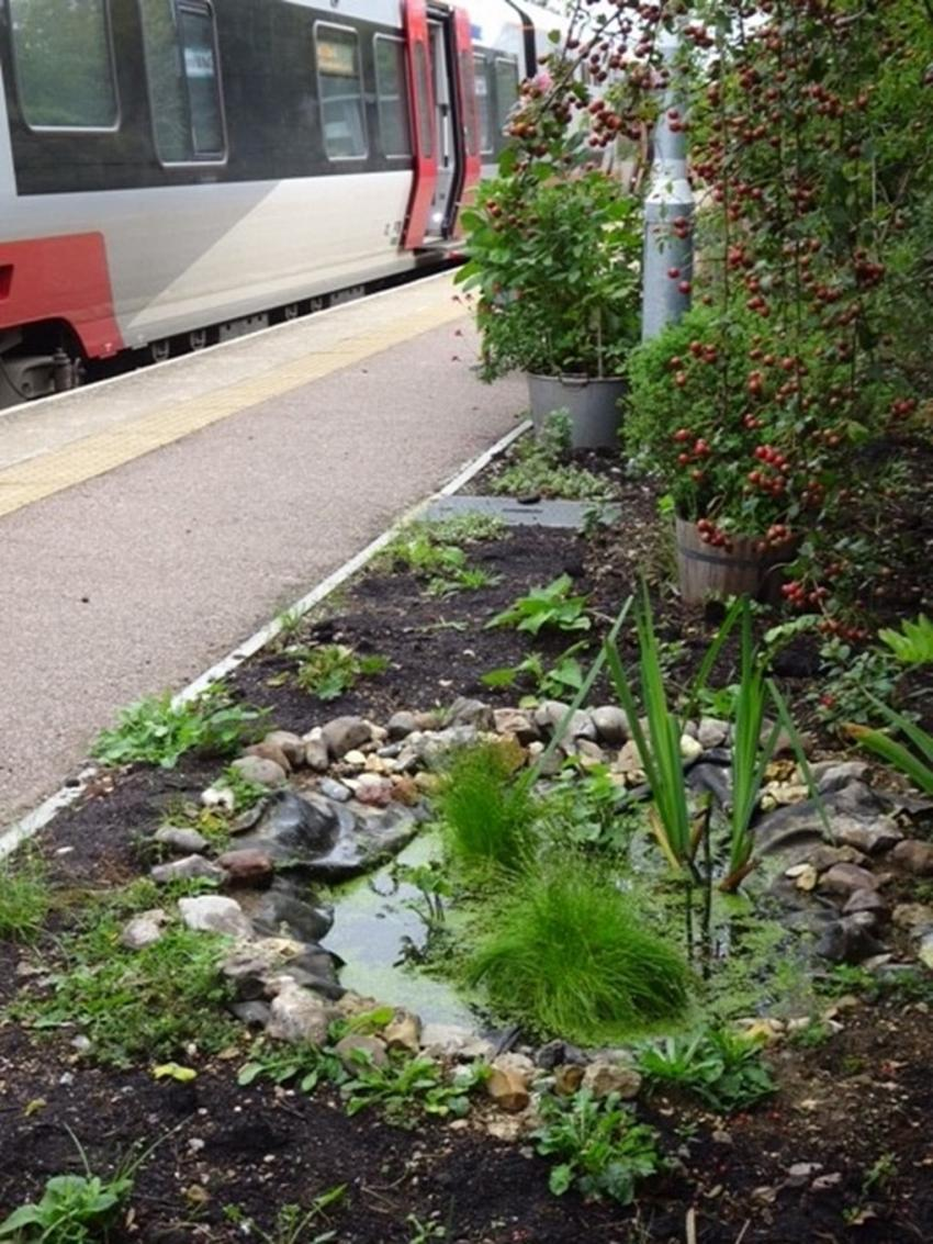 Days out by rail garden tour Dullingham