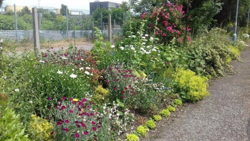 Days out by rail garden tour Thetford