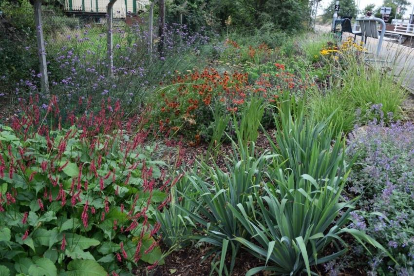 Days out by rail garden tour Westerfield