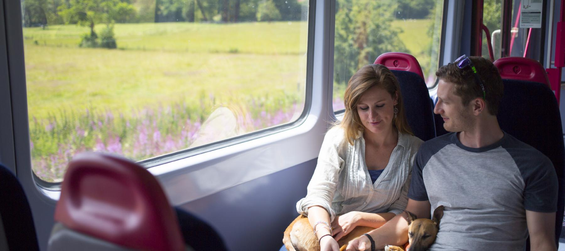 Couple looking at map on the train on the Tarka Line