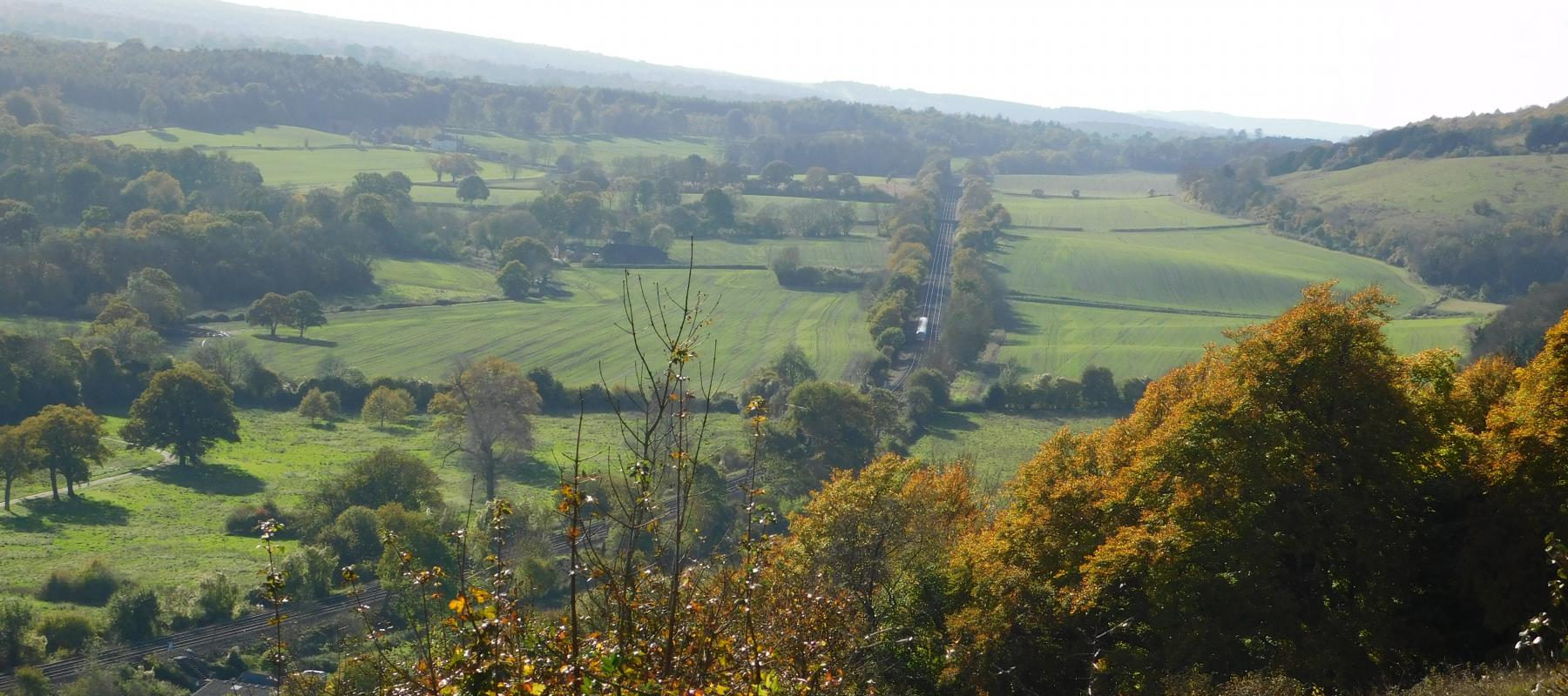 North Downs in the Autumn