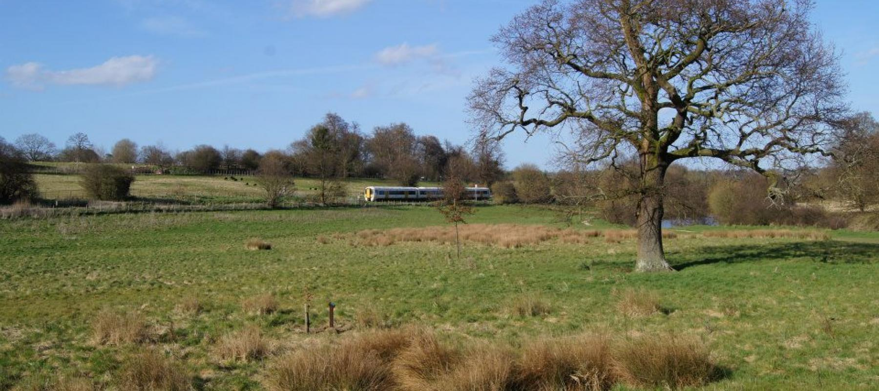 Train travelling through picturesque countryside along the Medway Valley Line. South East UK.