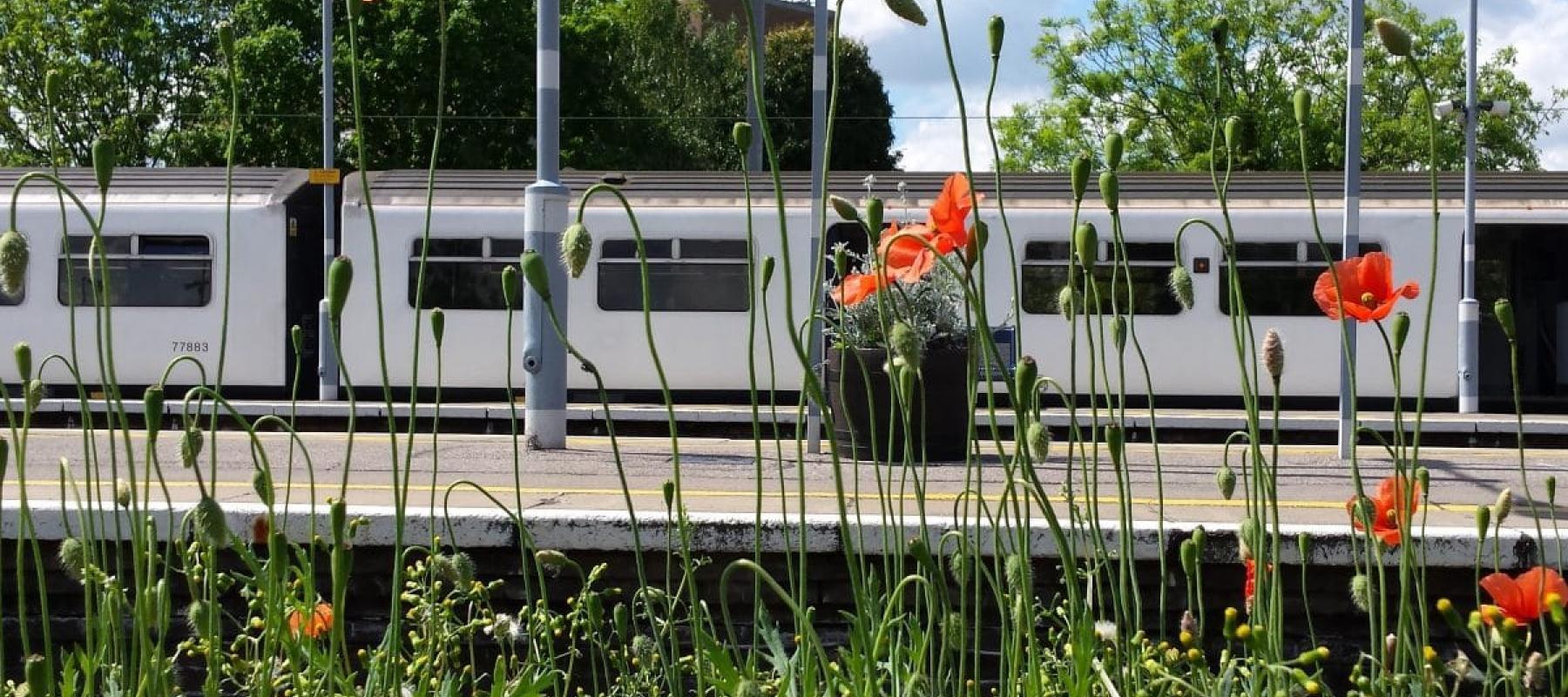 Wickford Railway Station