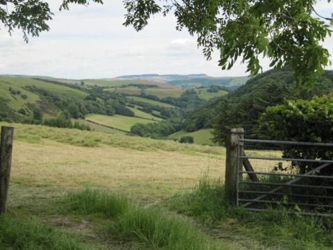 View across Radnorshire Forest from Llangunllo