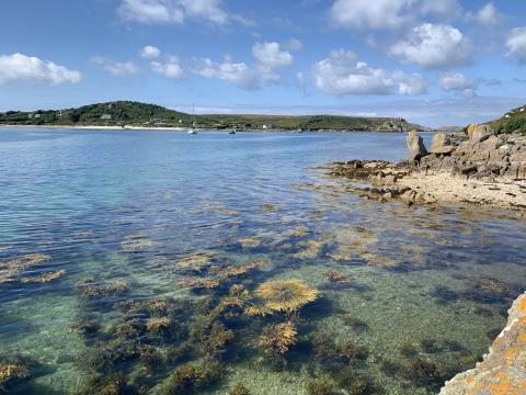The view of Bryher from Tresco