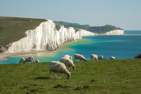 Seven Sisters chalk cliffs. Photo: Roman Grac from Pixabay