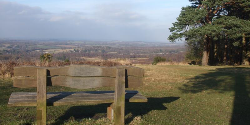 Bench seat overlooking Ashdown Forest