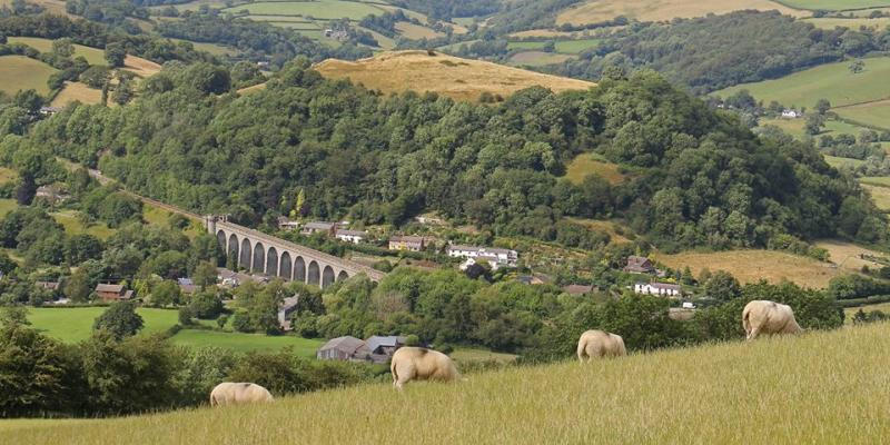 Explore the beauty of the Heart of Wales Line