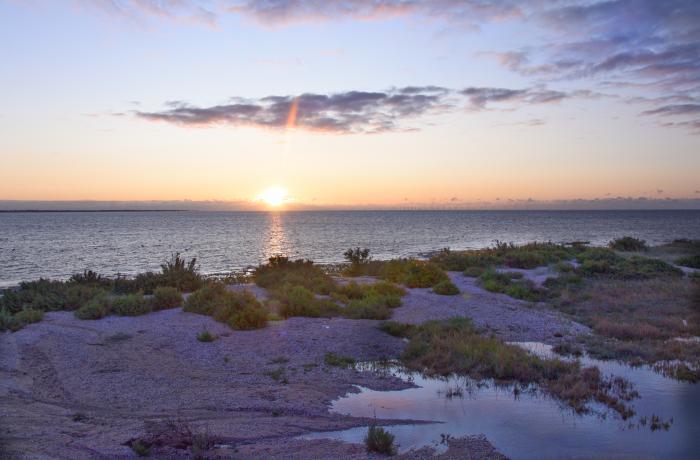 Sunrise over saltmarsh coast and cockle beach