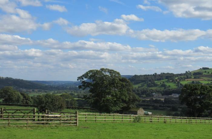 Explore the Aire Valley by train and discover walks from many stations along the line.
