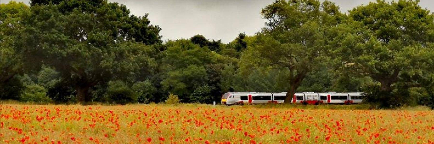 Greater Anglia train travelling through field